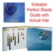 Wella Koleston Perfect Shade Guide